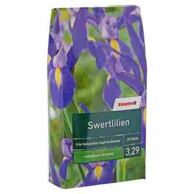 """Blumenzwiebeln """"Swertlilien"""" Iris Hollandica Saphire Beauty 25 Stück"""
