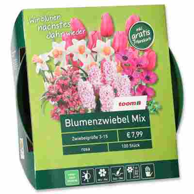 Blumenzwiebel-Mix rosa 100 Zwiebeln inkl. Pflanzkorb
