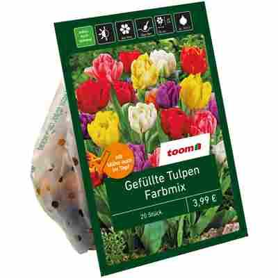 Gefüllte Tulpen 'Mix' 20 Zwiebeln