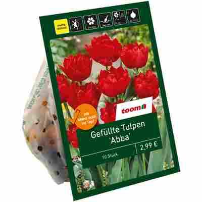 Gefüllte Tulpen 'Abba' rot 10 Zwiebeln