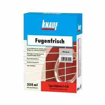 Fugenfrisch silbergrau 250 ml
