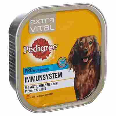 """Hundenassfutter """"Extra Vital"""" Immunsystem 300 g"""