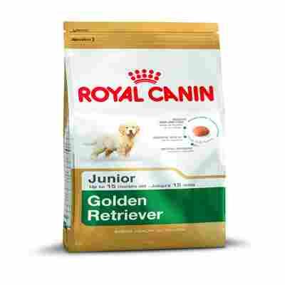 Golden Retriever 29 JUNIOR 3 kg