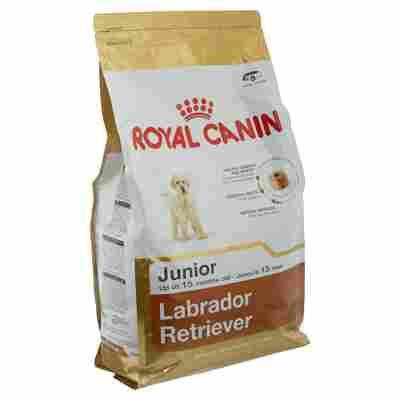 """Hundetrockenfutter """"Breed Health Nutrition"""" Labrador Retriever Junior 3 kg"""