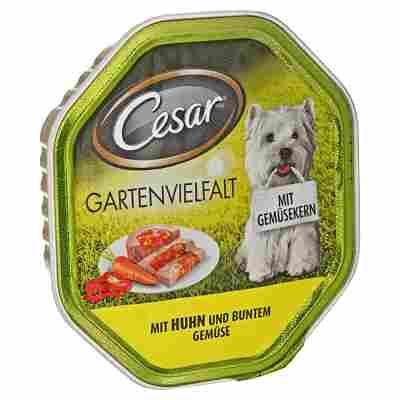 "Hundenassfutter ""Gartenvielfalt"" mit Huhn/Gemüse 150 g"