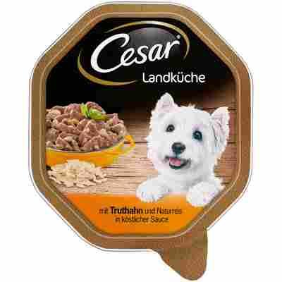 Hundenassfutter 'Landküche' Adult, mit Truthahn und Naturreis, 150 g