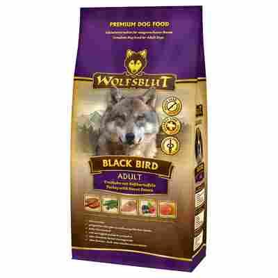 Hundtrockenfutter 'Black Bird' Adult Pute 500 g