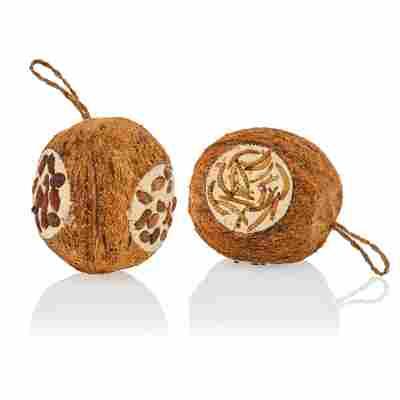 Vogel-Ergänzungsfutter gefüllte Kokosnuss