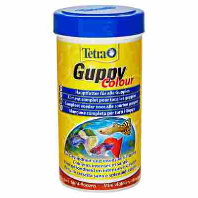 Fischfutter Guppy Colour 75 g