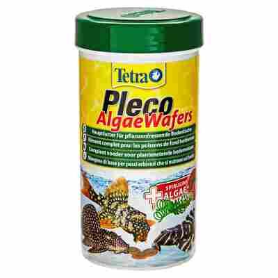 "Fischfutter ""Pleco"" Algae Wafers 105 g"