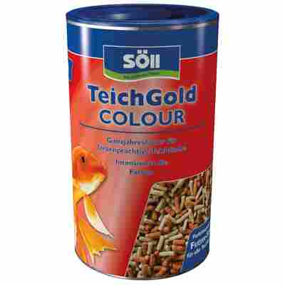 TEICH-GOLD Colour-Sticks 120 g