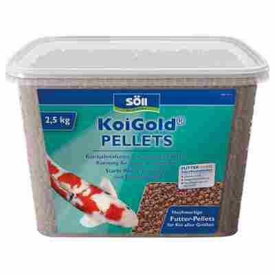 KoiGold Futter-Pellets 2,4 kg