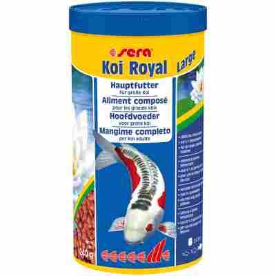 Koifutter 'Koi Royal' Large 240 g (1 l)