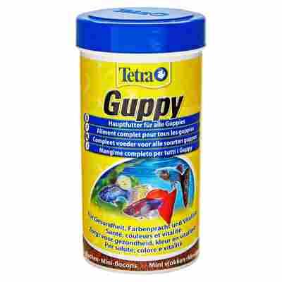 Fischfutter Guppy 75 g