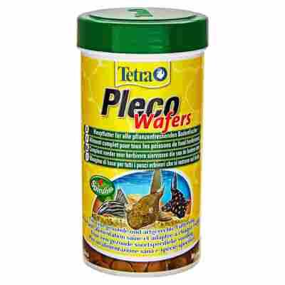 "Fischfutter ""Pleco"" Wafers 250 ml"