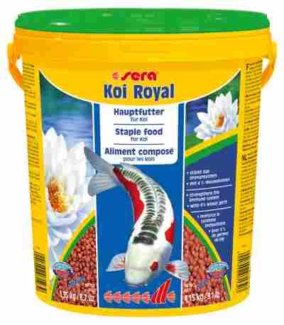 KOI ROYAL LARGE 3.95 kg