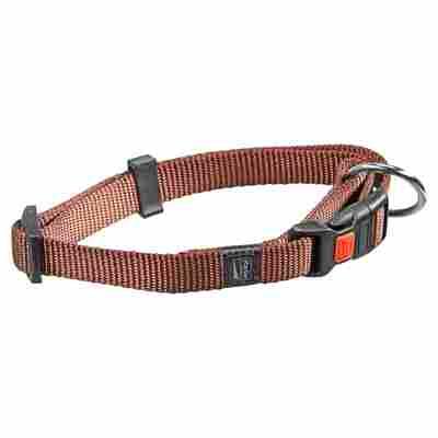 Hundehalsband braun 30 - 45 x 1,5 cm