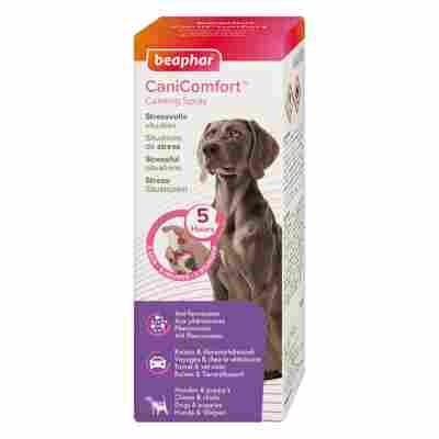 CaniComfort® Wohlfühl-Spray, 60ml