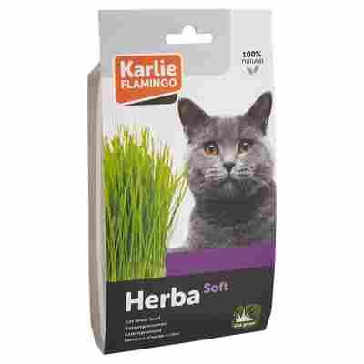 """Katzengrassamen """"Herba Soft"""""""