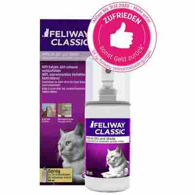 Pheromon-Spray gegen stressbedingtes Kratz- und Harnmarkieren von Katzen, 60 ml