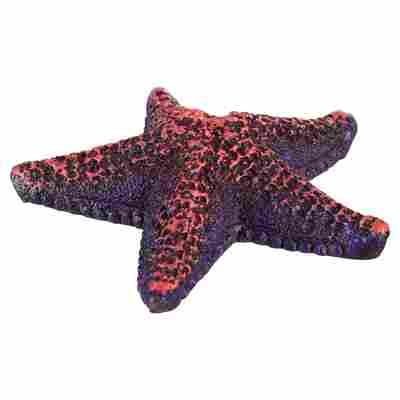 Deko-Seestern Polyresin 8,5 cm
