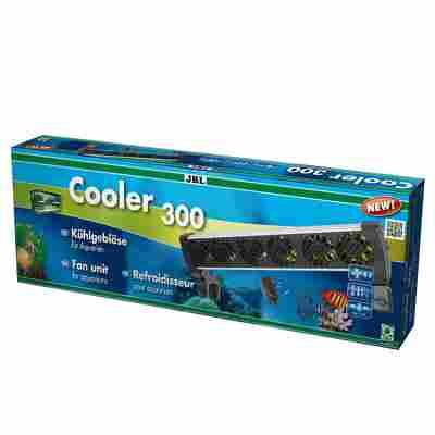 Cooler 300