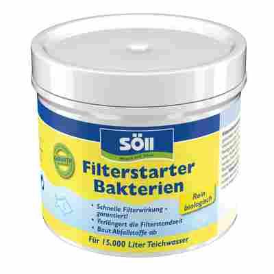 Filterstarter-Bakterien 100 g