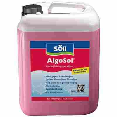 Algenmittel 'AlgoSol' 5 l