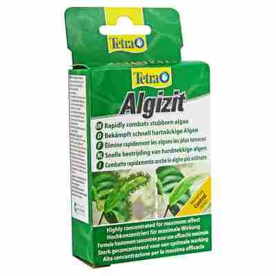 """Algenbekämpfungsmittel """"Algizit"""" 10 Tabs"""