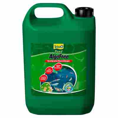 "Algenvernichter ""AlgoFree"" 3000 ml"