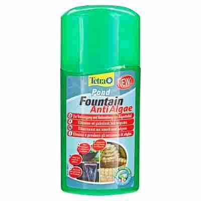 "Algenvernichter ""Fountain Anti Algae"" 250 ml"