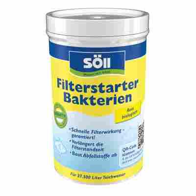 Filterstarter-Bakterien 250 g