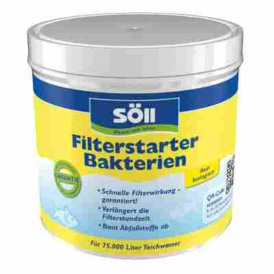 Filterstarter-Bakterien 500 g