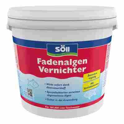 Fadenalgen-Vernichter 5 kg