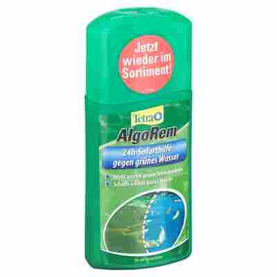 "Algenvernichter ""AlgoRem"" 250 ml"