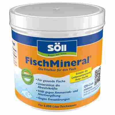 Teichpflege 'FischMineral' 500 g