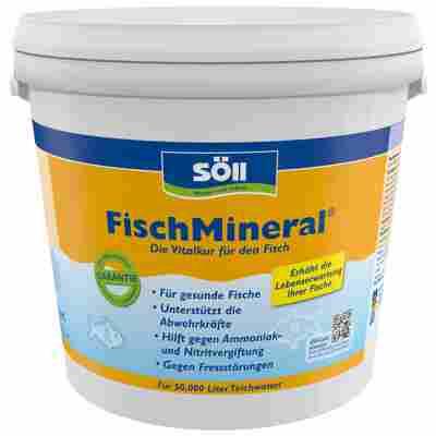 Teichpflege 'FischMineral' 5 kg