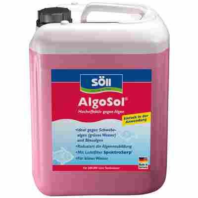 Algenmittel 'AlgoSol' 10 l