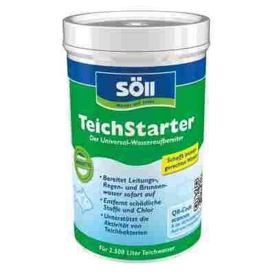 TeichStarter 250 g