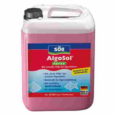 Algenmittel 'AlgoSol forte' 2,5 l