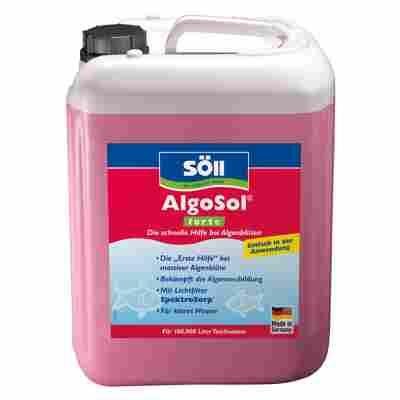 Algenmittel 'AlgoSol forte' 5 l