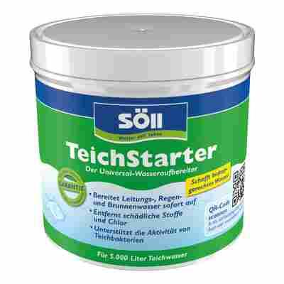TeichStarter 500 g