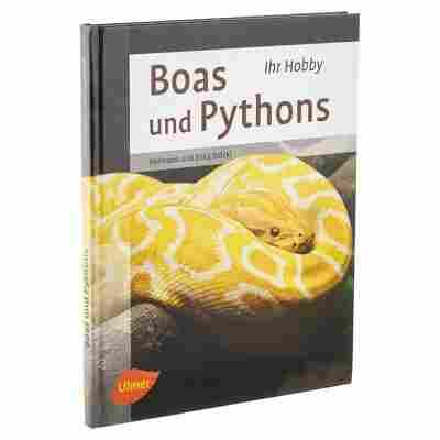 """Ulmer-Tierratgeber """"Ihr Hobby: Boas und Pythons"""" HC 95 S."""
