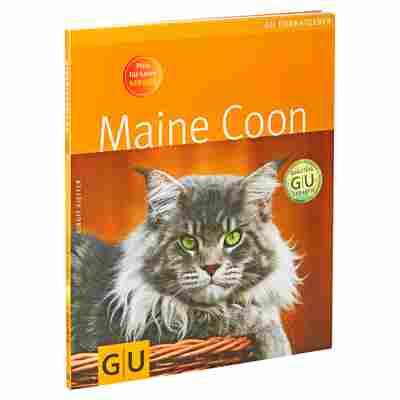 """GU-Tierratgeber """"Maine Coon"""" PB 64 S."""