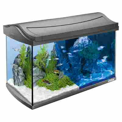 "Aquariumset ""AquaArt"" 60 l anthrazit"