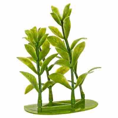 "Aquariumspflanze ""DecoArt Plantastics"" Hygrophila Gr. XXS"
