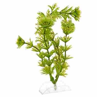 """Aquariumspflanze """"DecoArt Plantastics"""" Ambulia Gr. S"""