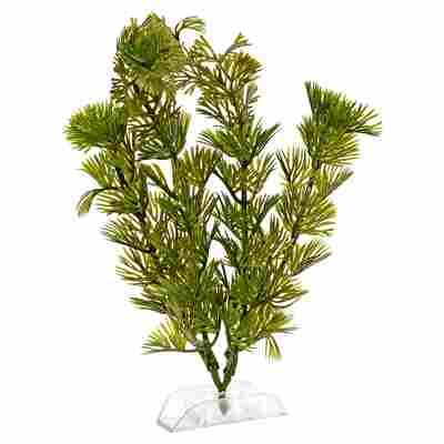 """Aquariumspflanze """"DecoArt Plantastics"""" Green Cabomba Gr. S"""