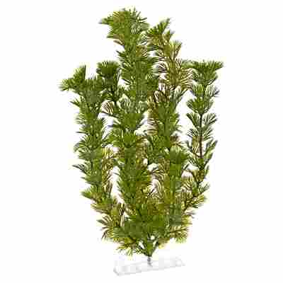 """Aquariumspflanze """"DecoArt Plantastics"""" Green Cabomba Gr. L"""