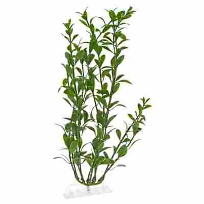 """Aquariumspflanze """"DecoArt Plantastics"""" Hygrophila Gr. L"""